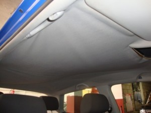 Polo Roof 1 (2)